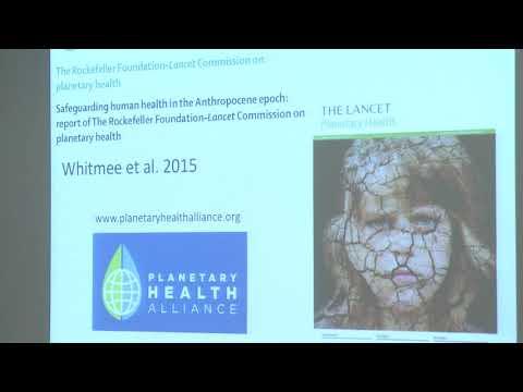 Planetary Health - Ein umfassendes Gesundheitskonzept im Zeitalter des Anthropozän